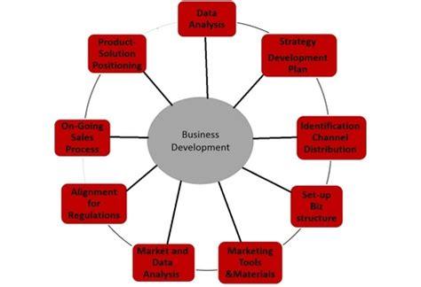 Creating a Custom Training Plan for Your Organization